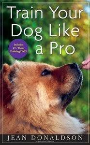 koera õpetamine