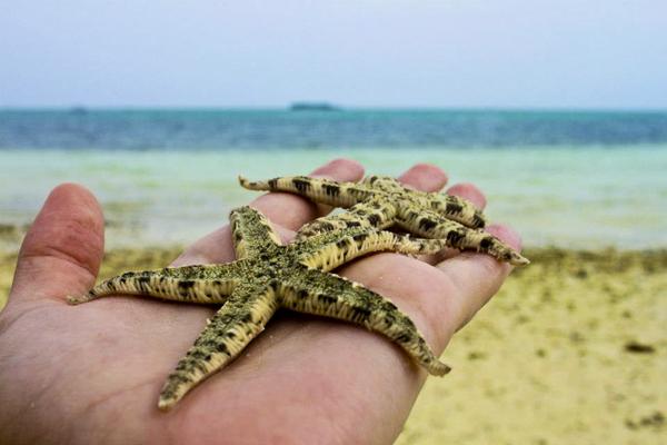 virgin island philippines