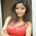 Gehana Vashisht Hot Photos at At FNCC (Film Nagar Cultural Center) New Year Celebrations 2014