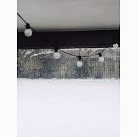 Snow // Fear in Wonderland