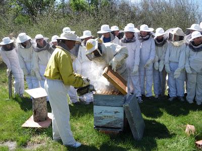 El bloc verd del montsoriu sortida a la casa de les abelles - Casa rural les orenetes ...