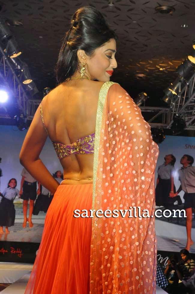 Shriya Sharan In Backless Blouse