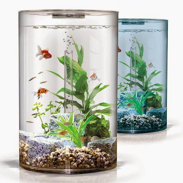 15 coolest fish bowls and awesome aquarium designs part 3 for Low maintenance fish tank