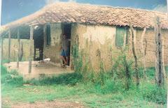 Velha casa-de-taipa - sertão