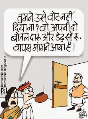 assembly elections 2013 cartoons, voter, cartoons on politics, indian political cartoon, election cartoon