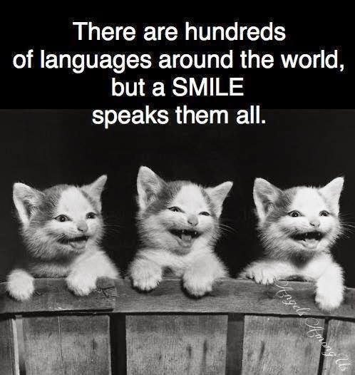 Wonderful Quotes on Smile