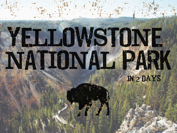 Yellowstone National Park in 2 Days
