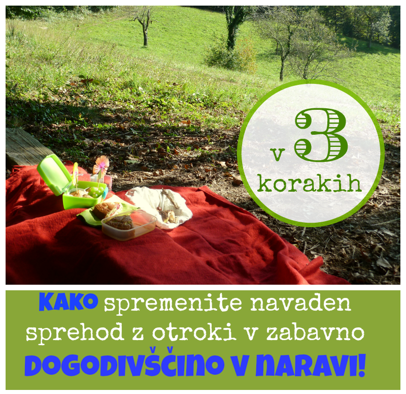 http://zelena-hiska.blogspot.com/2014/10/3-enostavni-koraki-otroske-dogodivscine-na-prostem.html