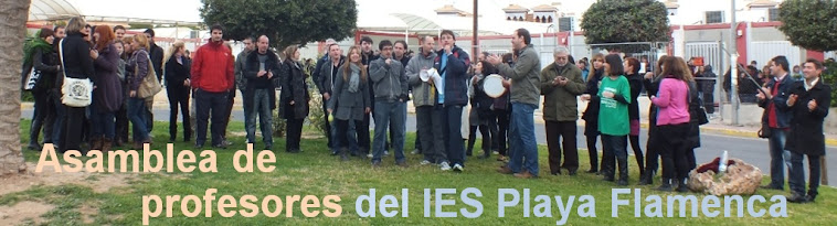 Asamblea de Profesores IES Playa Flamenca
