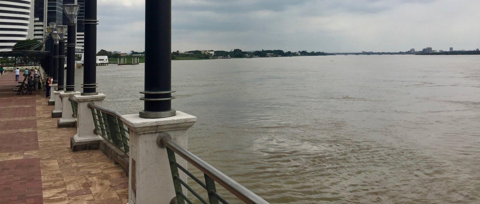 Una mirada al río desde Puerto Santana