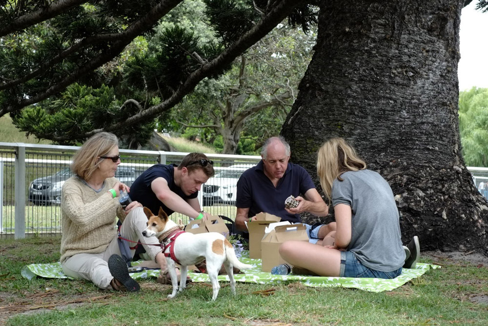 Fox terrier and family. Event Photography for Pets In The Park Gala Picnic, Centennial Park Sydney