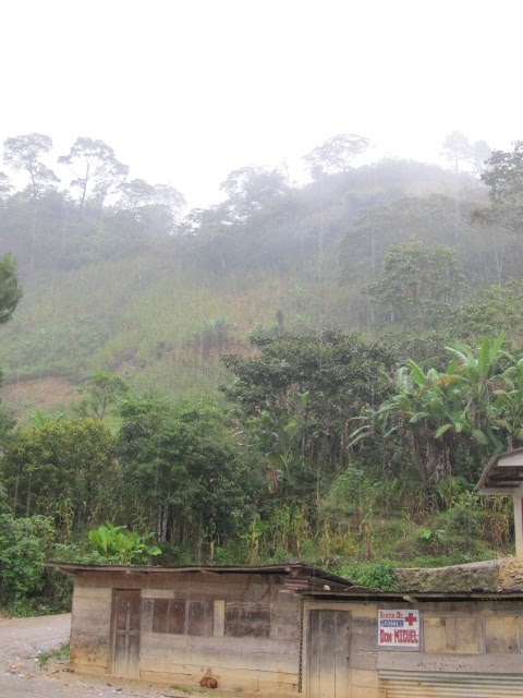 Part of this mountain came tumbling down during rainy season