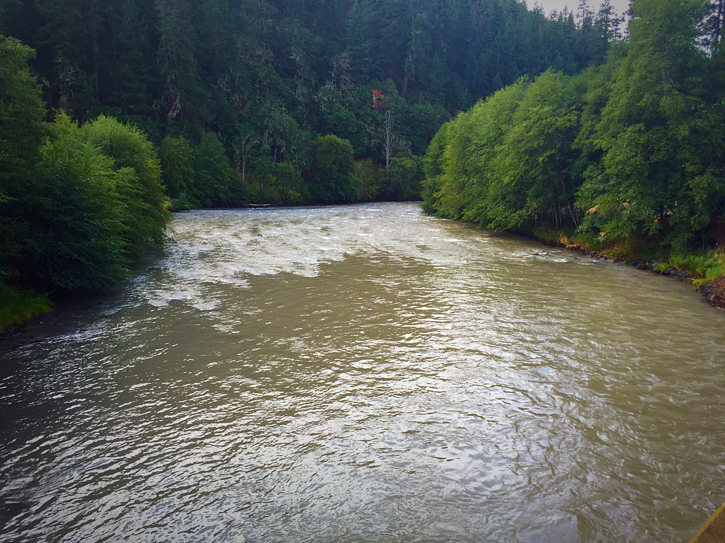 The evening hatch reports klickitat river report 8 30 15 for Klickitat river fishing report