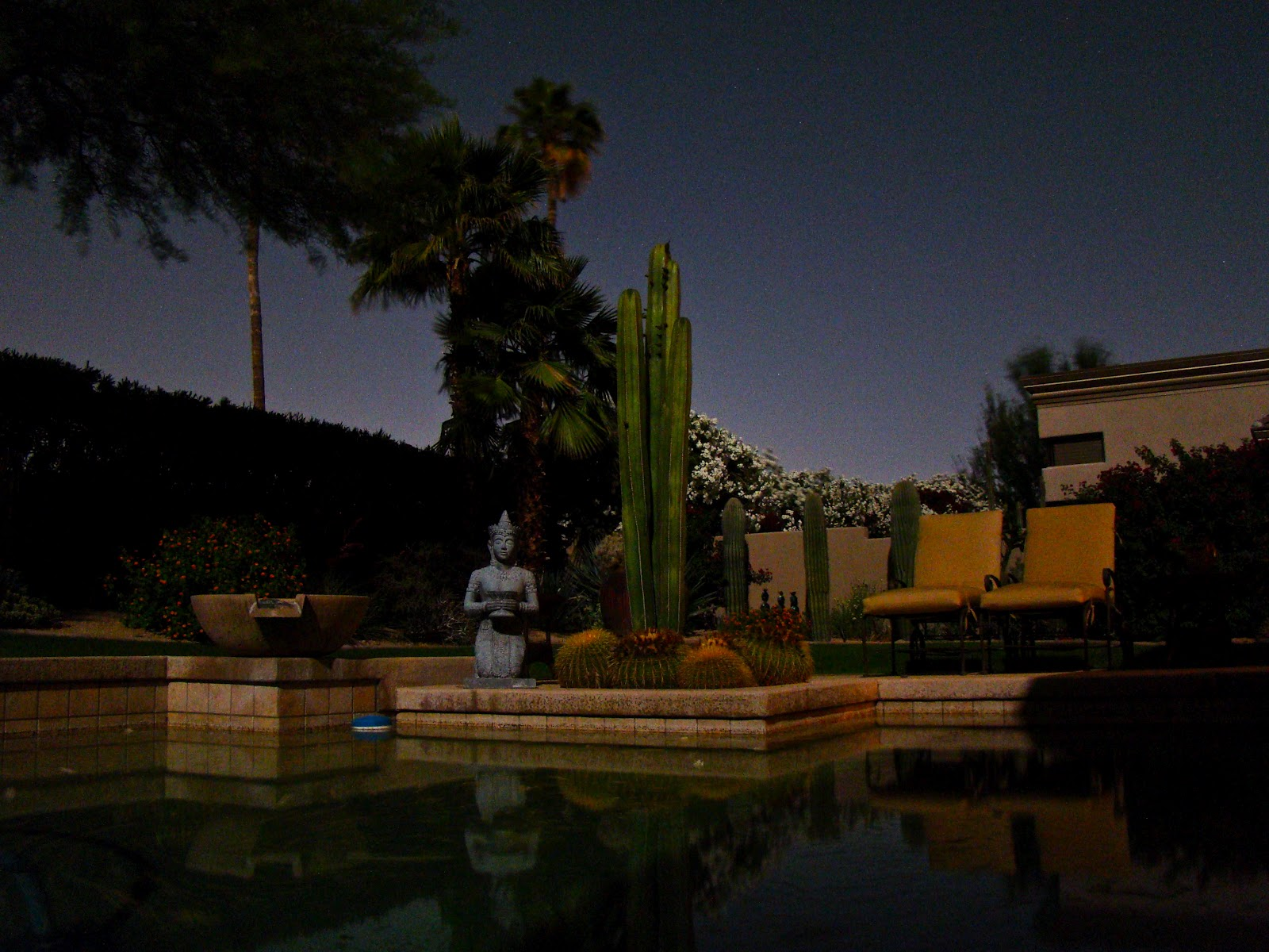 Backyard Pool At Night : Scottsdale Daily Photo Photo Backyard swimming pool at night