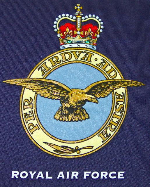 Essay on the royal air force