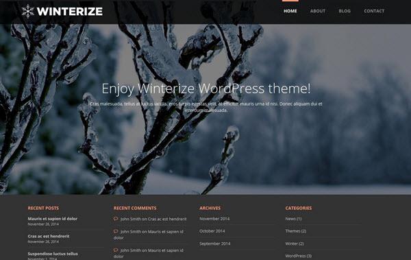 Winterize Wordpress theme