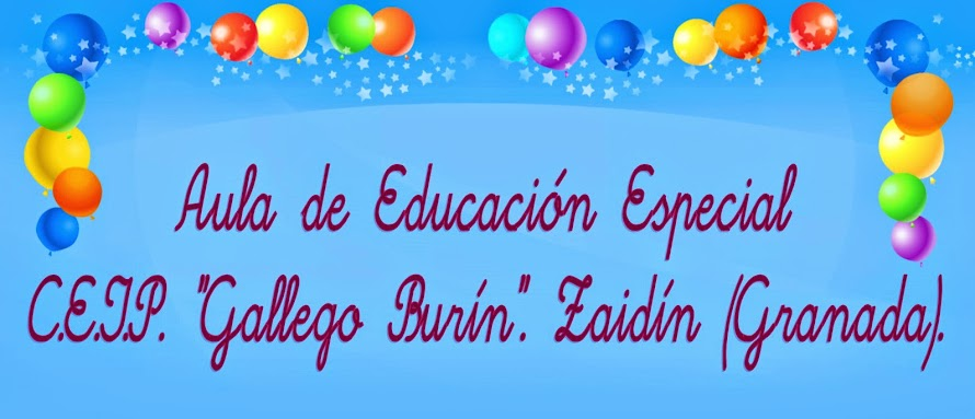 "Aula Específica de Educación Especial. C.E.I.P. ""Gallego Burín"". Granada."