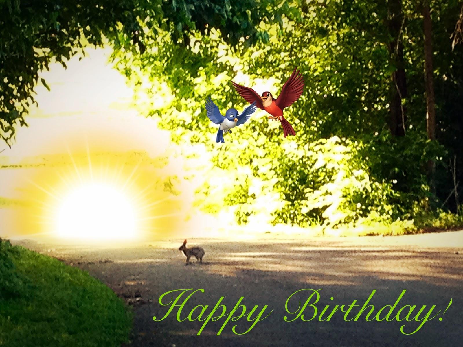 Happy Birthday card. #bunny #rabbit #sunshine #woodland animals #Aviary