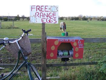 Free Range Pashley