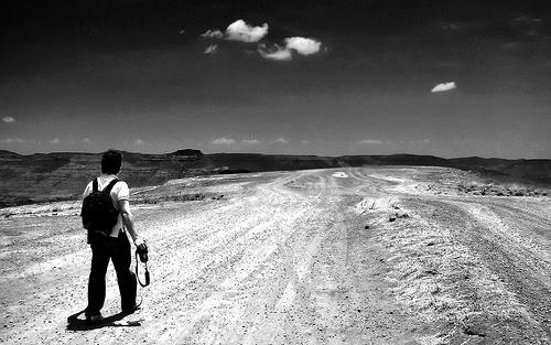 A Estrada Da Vida Versosfrases E Conceitos