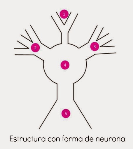 Estructura Big Neurona