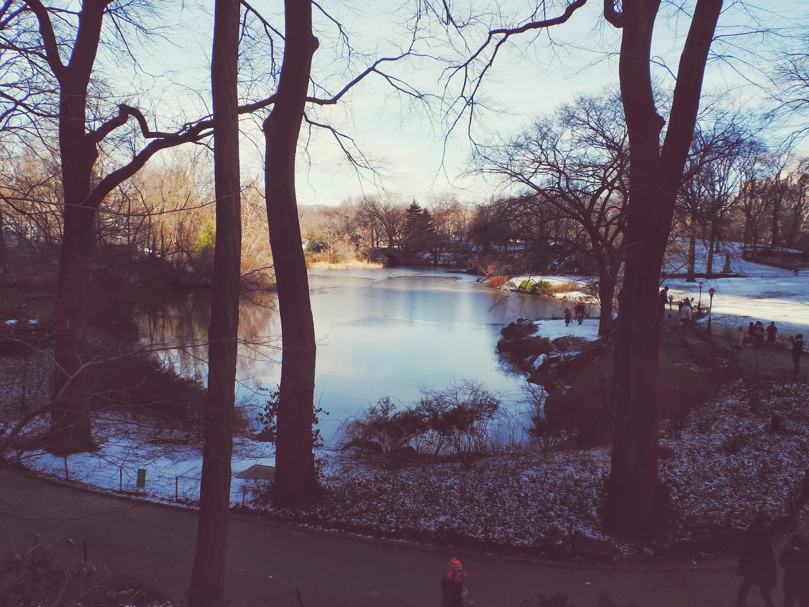 Central Park, New York, Winter, Snow
