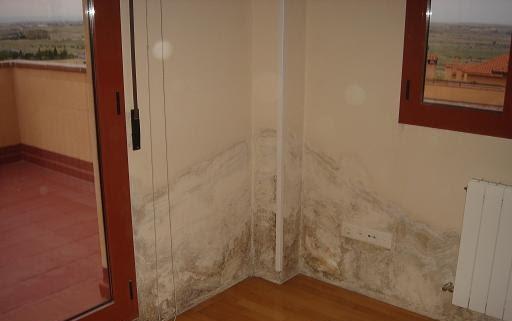 Cullera vertical el origen de la humedad en su vivienda Moho en la pared