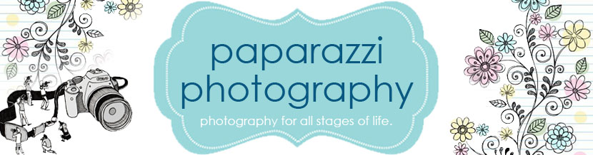 Paparazzi Photography - Our Blog