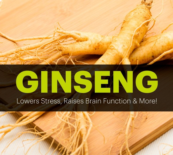 USE GINSENG FOR ENERGY CIRCULATION AND STAMINA