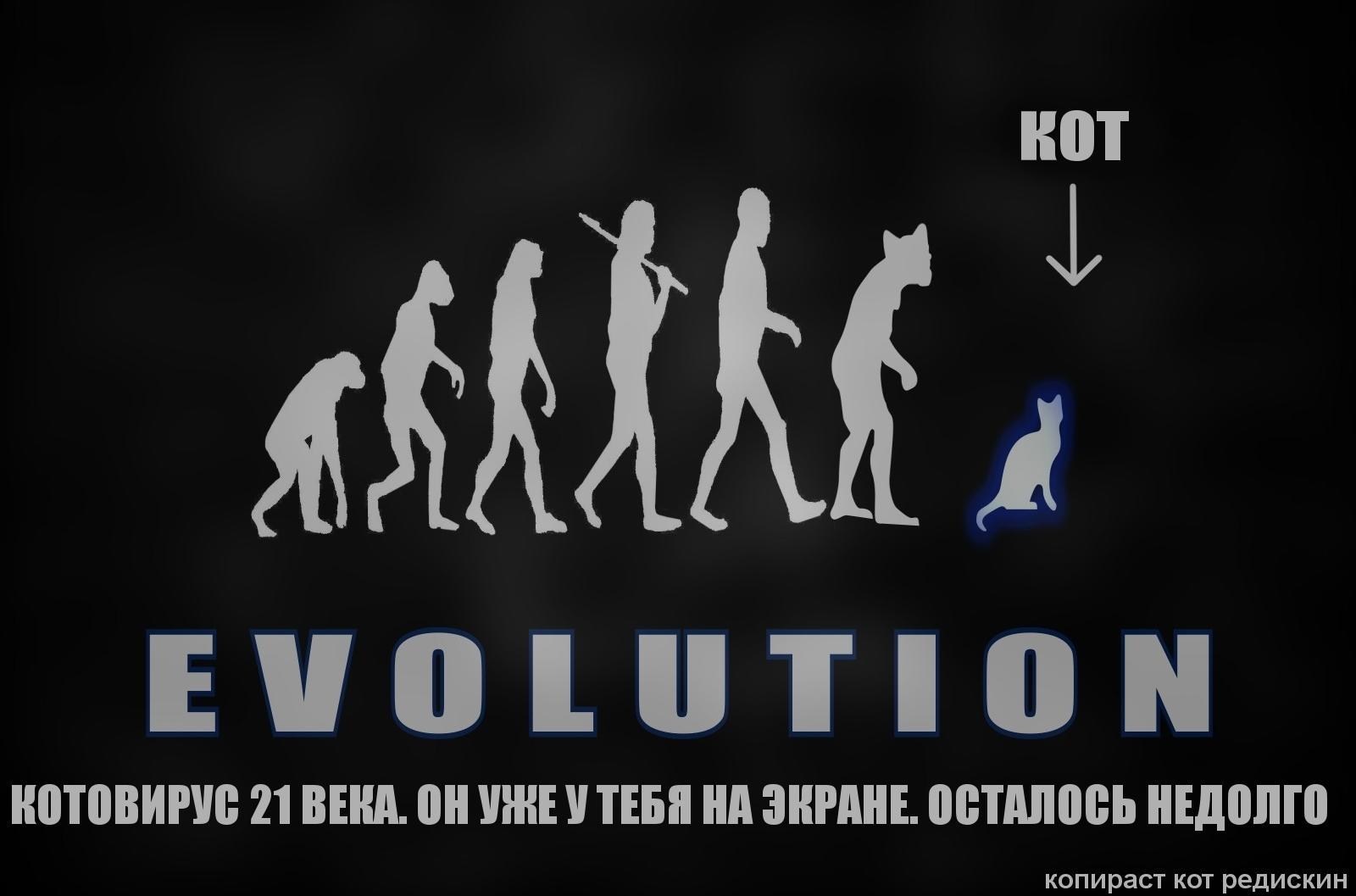 Эволюция: котовирус 21 века. Он уже у тебя на экране, осталось недолго