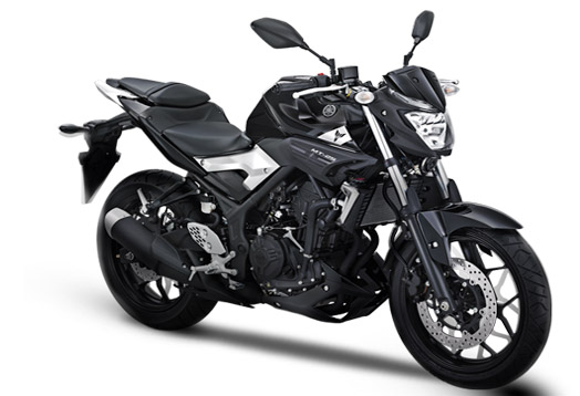 Yamaha MT25 Streetnaked Revealed : Price and Review