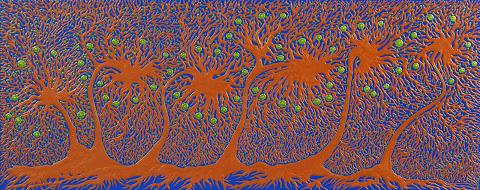 Des racines et des branches