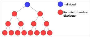 gambar jaringan individu