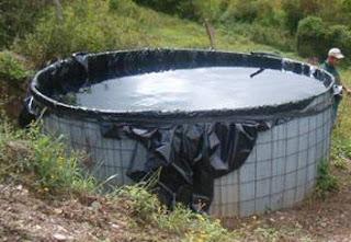 Visi n agroecol gica tanque artesanal zamorano for Como criar cachamas en tanques plasticos