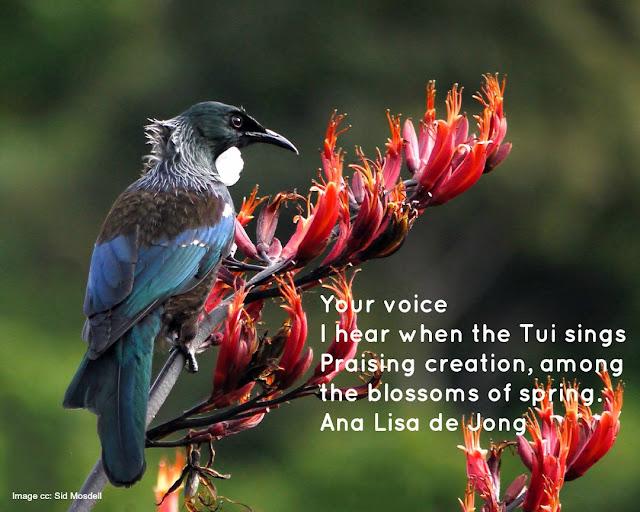 Tui Flower Flax