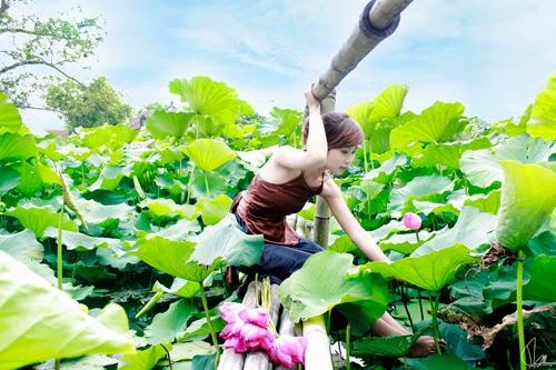 Chụp ảnh ngoại cảnh nghệ thuật giá rẻ tại Hà Nội
