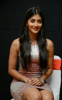 Pooja+Hegde+at+OLK+Success+Meet+Pictures5.jpg