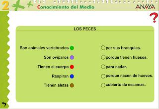 http://www.ceipjuanherreraalcausa.es/Recursosdidacticos/SEGUNDO/datos/03_cmedio/03_Recursos/actividades/03/act4.htm