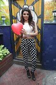 Hindi Actress Sherlyn Chopra photos-thumbnail-11
