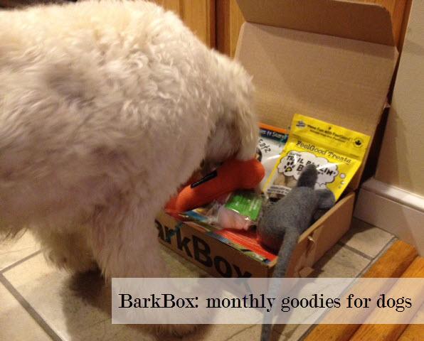 BarkBox giveaway, dog toy giveaway, BarkBox coupon code