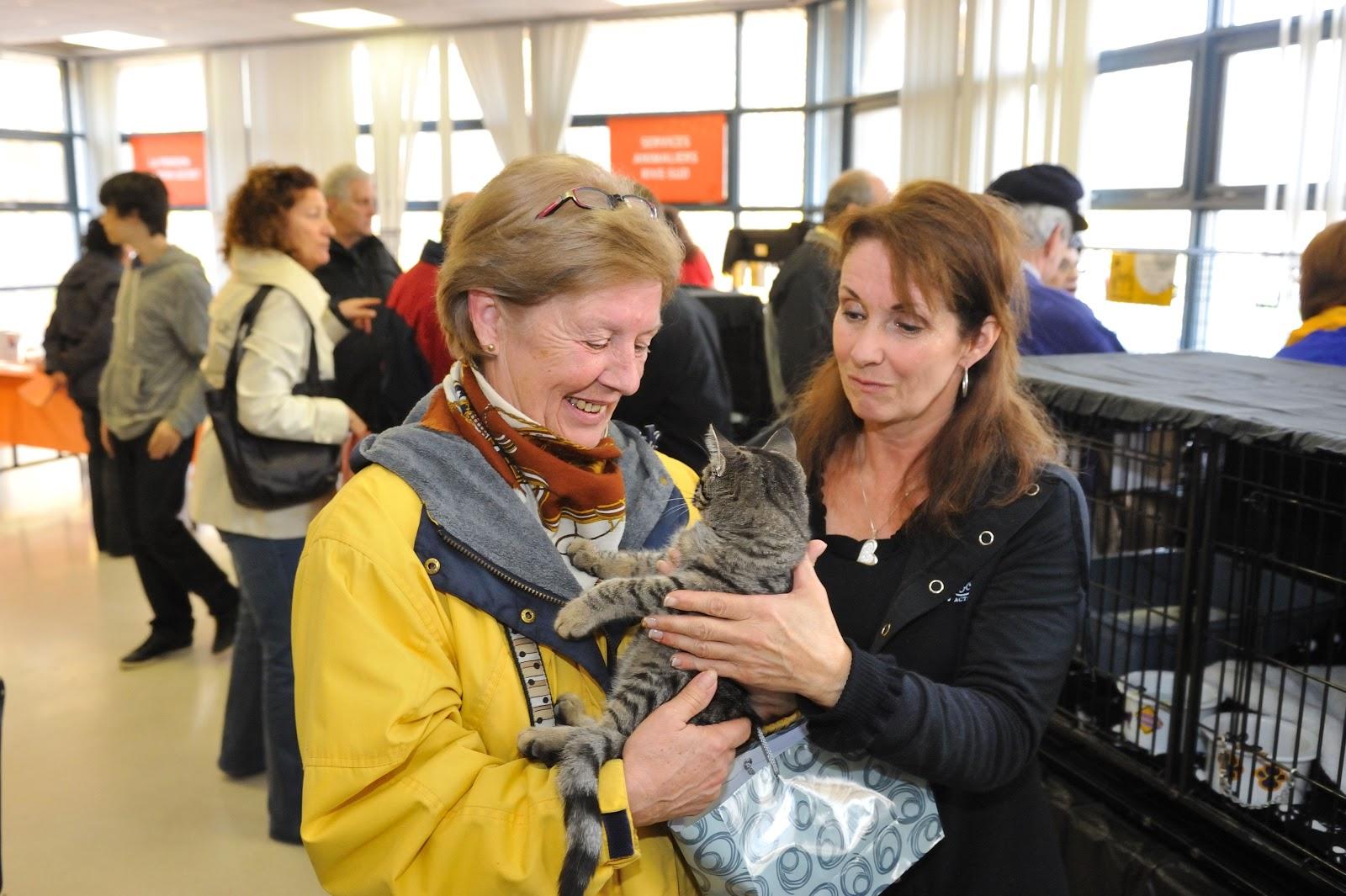 Dog Adoption Laval