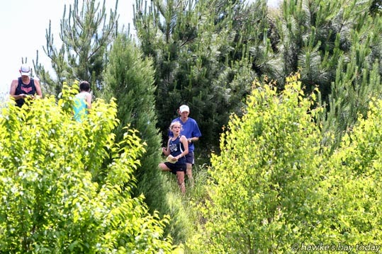 Hawke's Bay Orienteering, Christmas relay at Guthrie Smith Arboretum, Tutira. photograph