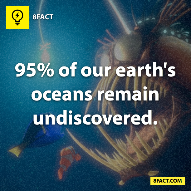 earth's oceans facts