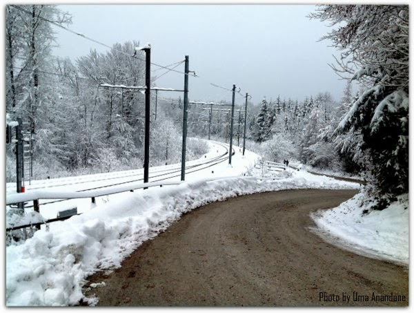 snow terrain