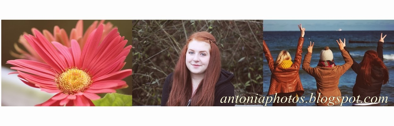 antoniaphotography
