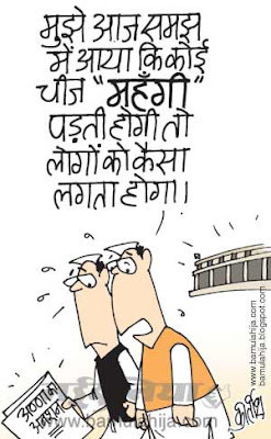 parliament, indian political cartoon, corruption in india, corruption cartoon, anna hazare cartoon, mahangai cartoon