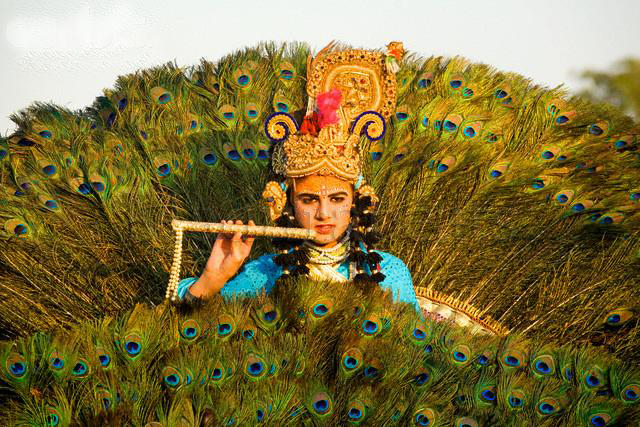 Pretty India Images - Lord Krishna with flute and  Peacock Feathers
