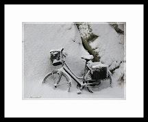 Vinterdvale
