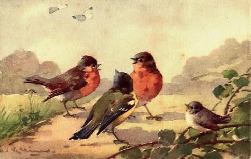 pássaros, pintura