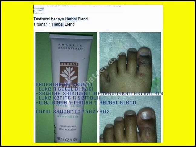 Herbal Blend, Cabaran, Info, Kongsi, Pengedar Shaklee Kuantan, Produk SHAKLEE, Blog Jom Sihat Ceria,